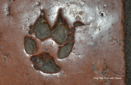Large dog or wolf print in Saltillo tile
