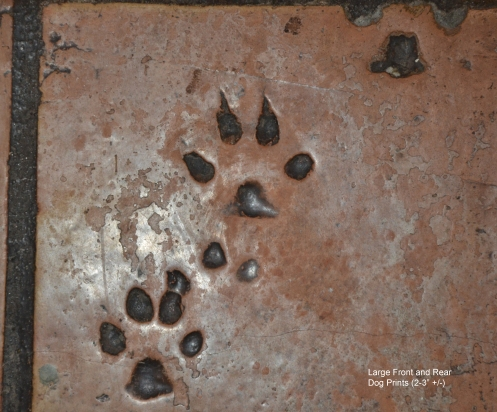 Large Front and Rear Dog Paw Print-kitchen-label